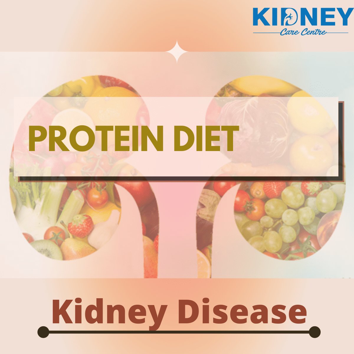Protein Diet in Kidney
