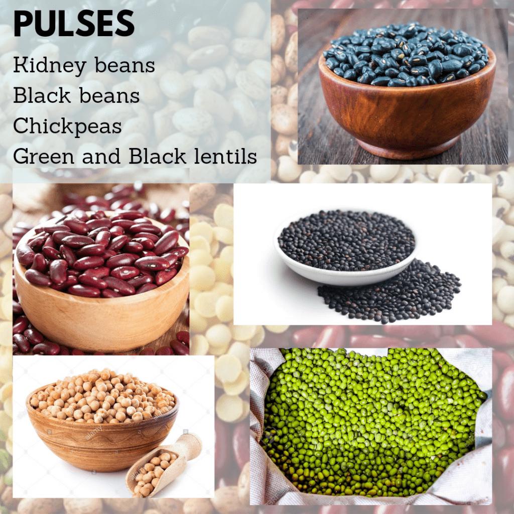Protein Pulses in Kidney Disease